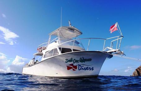Enjoy diving with professional team Sail Caribbean Divers